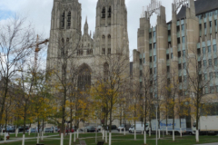 11 Kathedrale St. Michel und St. Gudula